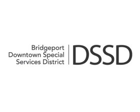 Downtown Special Services District